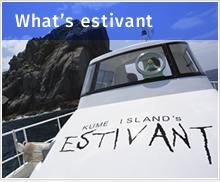 What's estivant